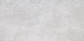 Gresie Tanum porțelanată 60 x 30 cm gri deschis